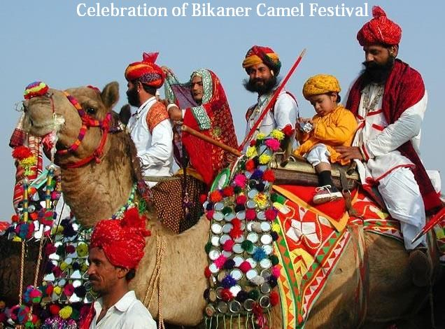 celebration of bikaner camel festival