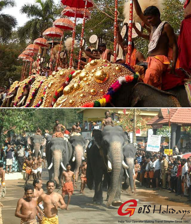kerala-elephant-race-at-gur