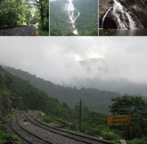 Trek to Dudhsagar waterfalls