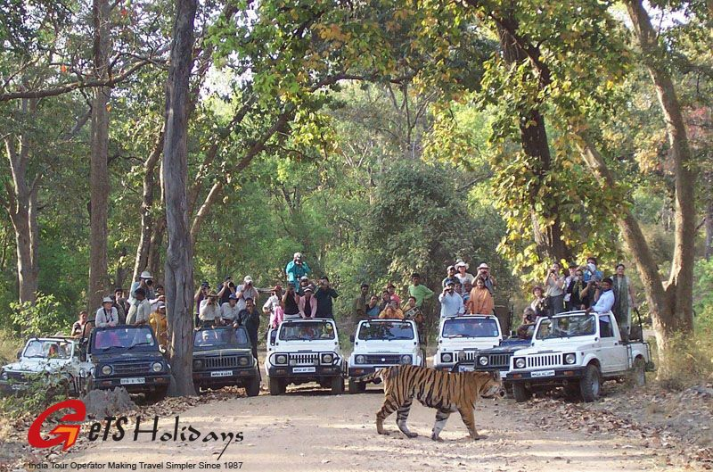 Bandhavgarh to Kanha by road