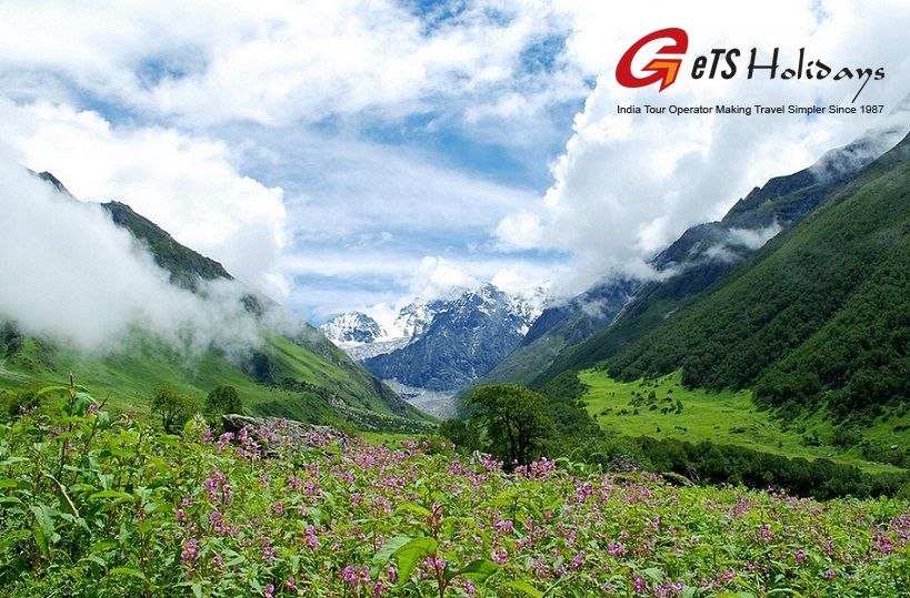 Valley of Flowers Uttrakhand