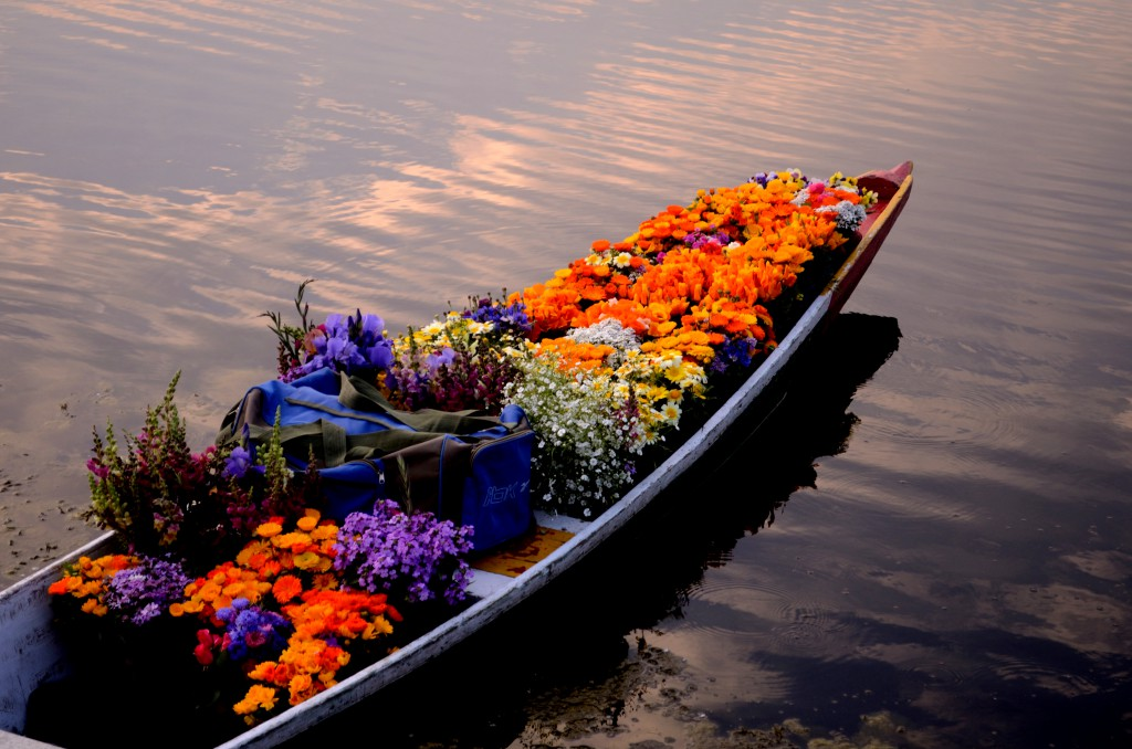 Flower Market On Dal Lake, Kashmir
