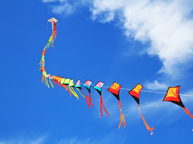Kite Flying Festival 2013 | www.pixshark.com - Images ...