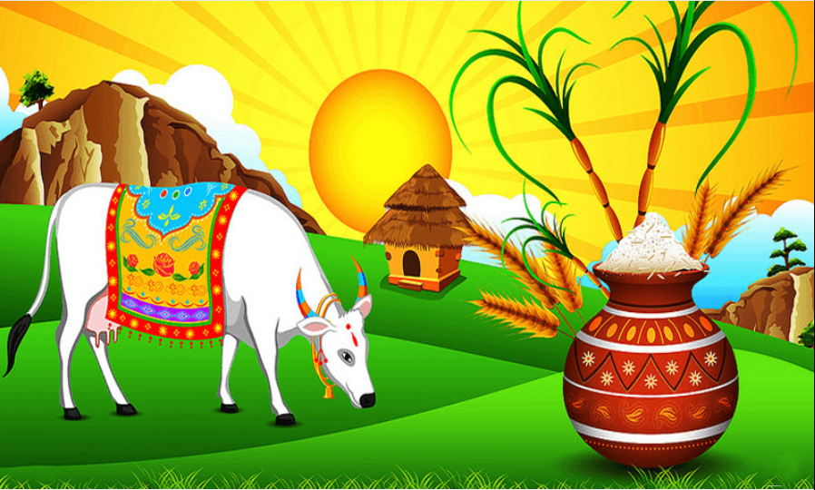 Know how Pongal - the Winter Harvest festival of Tamil Nadu - is