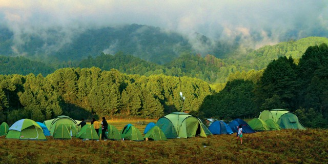 Ziro Valley Camping. Courtesy Google Images